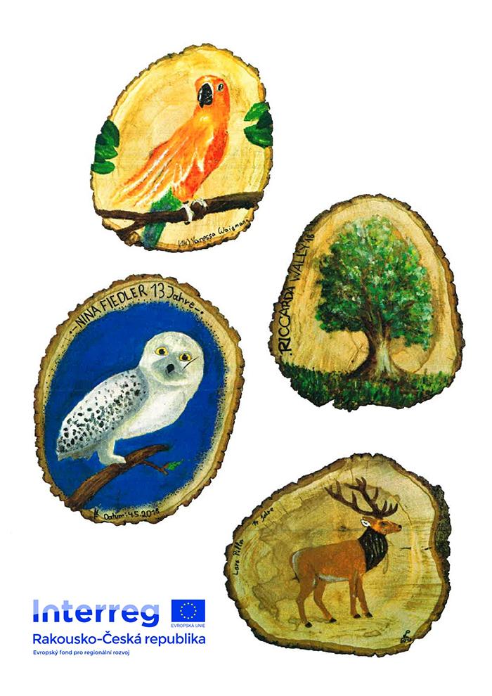Projekt Krása dřeva