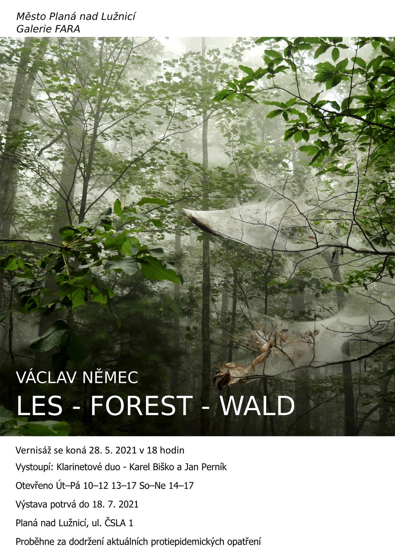 Výstava Les -Forest - Wald, Václav Němec