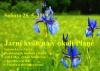 Sobota 25. 5. - Jarní květena v okolí Plané – botanická vycházka po plánských loukách a lesích, sraz s Mgr. Jitkou Štěrbová z Agentury AOPK