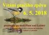 Vítání ptačího zpěvu - procházka po okolí Plané nad Lužnicí