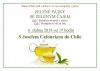 Zelený pátek se zeleným čajem - S Josefem Cafourkem do Chile
